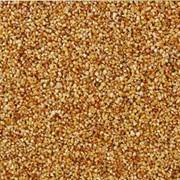 Окрашенная гранитно-мраморная крошка Bekoteks Shiny Gold Plaster №7002 фото