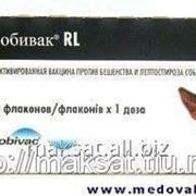 Вакцина Нобивак RL 10 х 1D фото