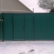 Ворота и заборы из профлиста фото