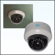 IP-камера RVi-IPC32DNL фото