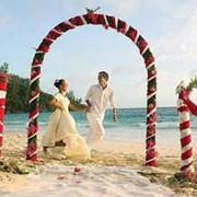 Свадебные туры на Сейшелы фото