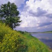 Изменение вида разрешенного использования земель фото