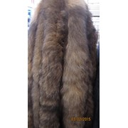Опушка Блюфрост (bluefrost fox) фото