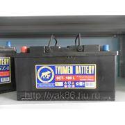 Аккумуляторная батарея 100 Ah фото