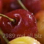 Черешня Крупноплодная в Молдове фото