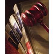 Оказание помощи в подготовке и составлении юридических документов фото