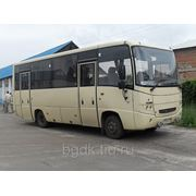 Автобус МАЗ 256170 фото