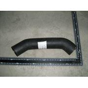 Патрубок радиатора нижний Yutong ZK6737D фото