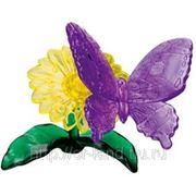 3D Головоломка Бабочка фото