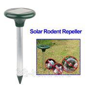 Ультразвуковой отпугиватель от грызунов на солнечной батарее фото