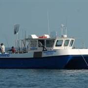 Услуги центров досуга. Организация морской рыбалки. фото
