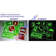 Эвакуационные знаки фотолюминесцентные на пленке 200х200мм фото
