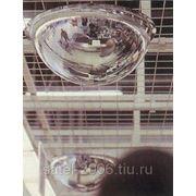 Зеркало купольное D600х360, D800х360, D1000х360 фото