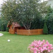 Уход за садами и комнатными растениями