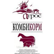 Кормовой продукт гранулированный для свиней и КРС фото