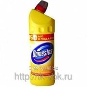 Чистящее средство Domestos 500 мл фото