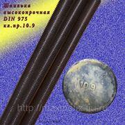 Шпилька резьбовая высокопрочная м24х1000.10.9 DIN 975. фото