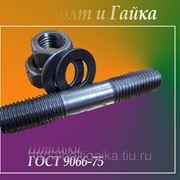 Шпильки для фланцевых соединений, АМ16-6gх160.40.35 ГОСТ 9066-75.(масса 0.236 кг.) фото