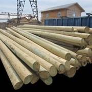 Опоры деревянные ЛЭП, пропитанные, L - 8,5 м. - 11 м. фото