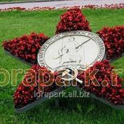 Каркас топиарной фигуры Звезда Славы фото