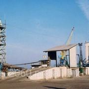 Комплекс по производству комбикормов и перевалке зерна мощность 100 тыс. т. в год фото