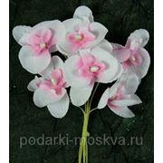 """Набор аксессуаров """"Орхидеи"""" из 12 шт. 199966 фото"""