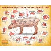 Схема разруба свинной туши