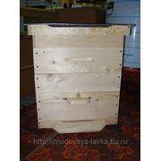 Пчелиный Улей, 12-ти рамочный Дадан разборный с двумя магазинами фото