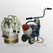 Агрегат доильный для коров АД-03, АД-03C (разборная резина) фото