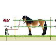 Лошади 9В-столбы OLLI - от 100м до 300 м