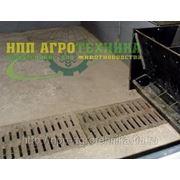Гидросмыв - система навозоудаления в свинарниках фото