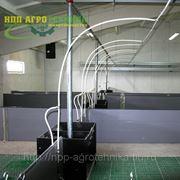 Оборудование систем поения свиней фото