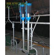 Оборудование для автоматизированного кормления при привязном содержании КРС фото