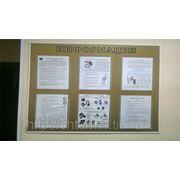 Информационный стенд с карманами и оргстекла, таблички, вывески фото