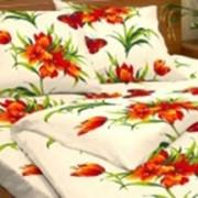 Ткань постельная Бязь 100 гр/м2 150 см Набивная Виола оранжевый/S053 TDT фото