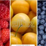 Пищевые красители фото