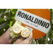 Роналдинио фото