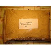 Мука из семян тыквы, 500г. фото