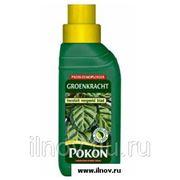 Регенератор для листьев Pokon 250 мл. фото