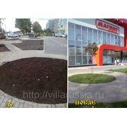 """Рулонные газоны """"Элит"""" Краснодарский край фото"""