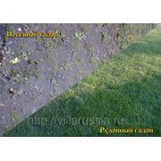 Лучшим способом создания качественного газона считается