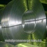Проволока железная (стальная) фото