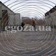 Егоза Стандарт плюс 1350/11 фото