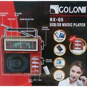 Громкоговоритель с головным микрофоном RX-Q5