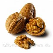 Грецкого ореха масло 3л. фото