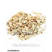 Жмых ядра кедрового ореха. Упаковка 1 кг. фото