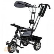 Велосипед детский трехколесный Mini trike серебряный фото