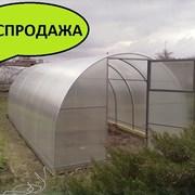 Теплица Надежная 4 м. Усиленная, с шагом дуги 0,5 м. фото