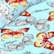 Ткань постельная Бязь 142 гр/м2 150 см Набивная цветной 3399-3/S905 TDT фото