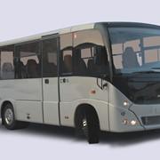 Пассажирский автобус МАЗ-241 фото